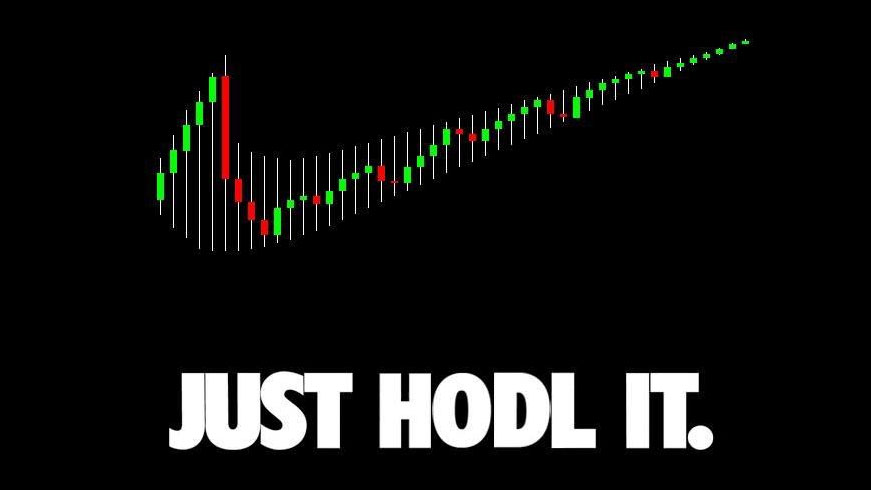 Cryptocurrency hodl meme image